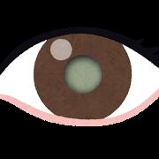 eye_hakunaisyou